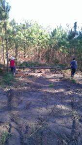 Werner & Sarah moving a log on foot
