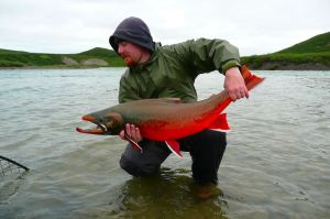 LOOK AT THAT GORGEOUS FISH! It'd be worth growing Arctic char just to look at them!